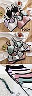 """Комплект жіночої білизни чашка С, (1упак/6 шт) """"LASKA"""" купити недорого від прямого постачальника"""