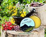 Бальзам з альпійських трав, 33 трави, Швейцарія / Alpine Herbs Balm, фото 2