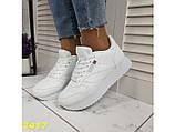 Кроссовки белые на высокой подошве колассика 36, 38, 39, 41 р. (2417), фото 3