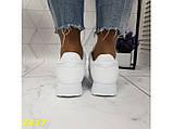 Кроссовки белые на высокой подошве колассика 36, 38, 39, 41 р. (2417), фото 2