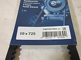 Ремінь генератора ЗАЗ Сенс,Таврія,Славута Bosch, фото 2