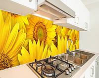 Наклейка виниловая на кухонный фартук подсолнухи большие, с защитной ламинацией, 60 х 200 см.