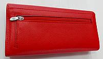 Женский кожаный кошелек Balisa PY-D144 ярко-красный Женские кожаные кошельки БАЛИСА оптом Одесса 7 км, фото 4