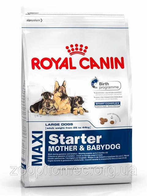 Корм Royal Canin (Роял Канін) MAXI STARTER для цуценят великих порід (для вагітних і годуючих сук), 15 кг