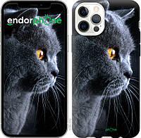 Чехол на Apple iPhone 12 Красивый кот