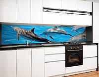 Кухонный фартук на виниловой пленке с морскими животными, с защитной ламинацией, 60 х 200 см.