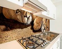 Кухонный фартук на виниловой пленке с животным миром, с защитной ламинацией, 60 х 200 см.