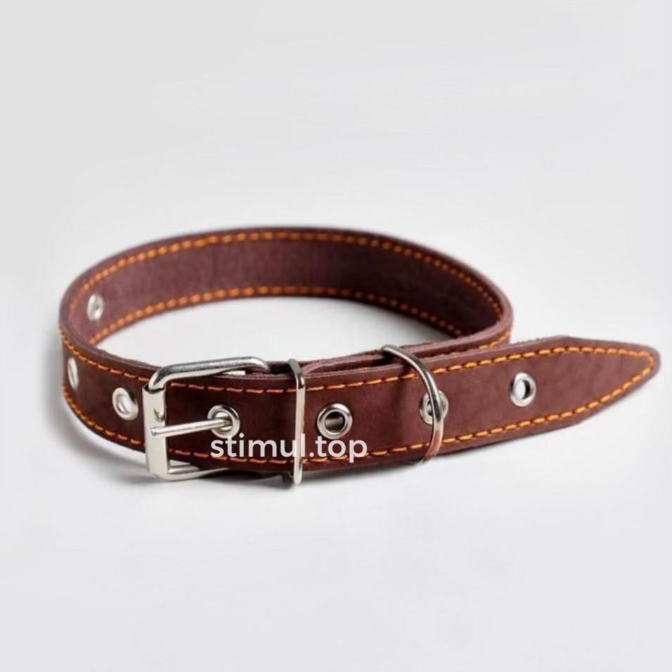 Ошейник кожаный для собак 20мм х 40см 🐕 Ошейник для собак кожаный безразмерный коричневый