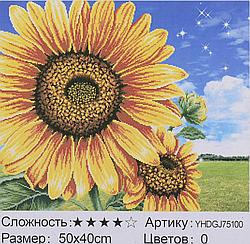 Картина по номерам + Алмазная мозаика 2в1 YHDGJ 72017 (30) 50х40см Павлин Цветы