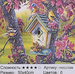 Картина по номерам + Алмазная мозаика 2в1 YHDGJ 72017 (30) 50х40см Павлин Птицы