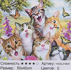 Картина по номерам + Алмазная мозаика 2в1 YHDGJ 72017 (30) 50х40см Павлин Котята