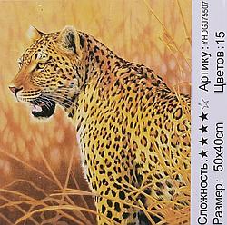 Картина по номерам + Алмазная мозаика 2в1 YHDGJ 72017 (30) 50х40см Павлин Рысь
