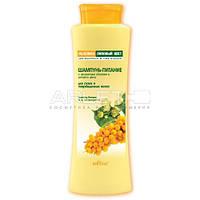 Шампунь-питание с экстрактами облепихи и липового цвета для сухих и поврежденных волос - Bielita 500мл