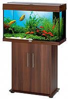 Juwel  Rio  125 (Ювель Рио) , аквариум 125л.