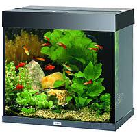 Juwel Lido (Ювель Лидо) , аквариум 120л.
