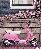 Картина по номерам Город роз. Нормандия 40*50
