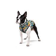 "Курточка WAUDOG для собак, рисунок ""Бэтмен комикс"", размер S40, фото 3"