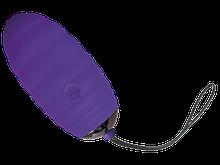 Виброяйцо Adrien Lastic Ocean Breeze Purple с пультом ДУ, 10 режимов работы