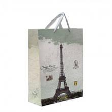 Пакет подарунковий красивий паперові подарунковий пакет новорічні 2021 42х31см ПП-1.2