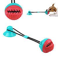 Іграшка для собак Bronzedog PetFun м'яч на канаті