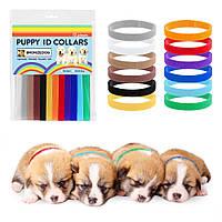 Набор ошейников для щенков и котят Bronzedog 12шт. разноцветные