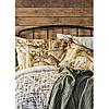 Набор постельное белье с пледом Karaca Home - Vella yesil 2020-1 зеленый евро, фото 4