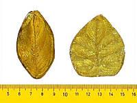 """Молд набор """"Лист шиповника"""" для Фоамирана,глины 3х5 см, 4х5,5 см"""