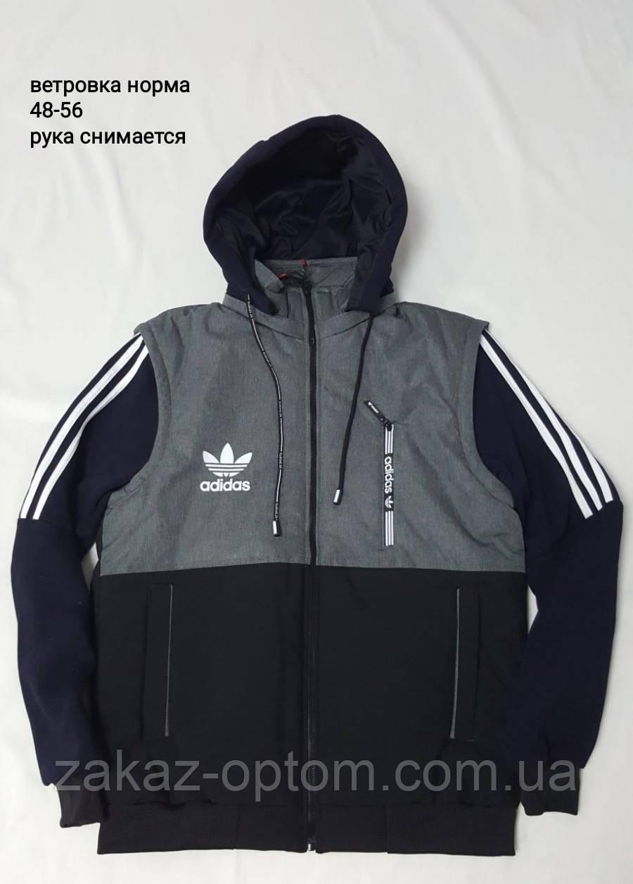 Куртка чоловіча вітровка норма (48-56) Україна оптом -59441