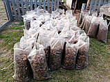 Кора соснова продаж Мульча Київ Кора для мульчування Київська область, фото 9