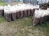 Кора соснова Мульча Київська область Київ продаж Мульчування, фото 8