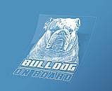 Наклейка на машину/авто Английский бульдог на борту (Bulldog on Board), фото 2
