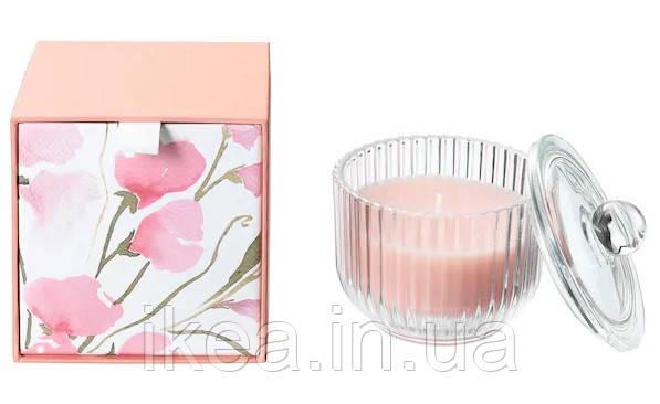 Ароматична свічка в склянці рожева в коробці IKEA BLOMDOFT 9 см х 20 годин горіння ІКЕА БЛОМДОРФ