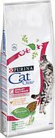 Cat Chow (Кет Чау) Сухой корм для кошек Special Care Urinary Tract Health 15кг (профилактика мочекаменной