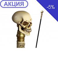 Трость Череп GC-Аrtis P-Skull-002BN-F (GC-Artis), фото 1