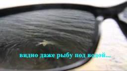 Сонцезахисні окуляри SALMO