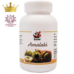 Амалакі капсули (Amalaki Capsules, SDM), 100 капсул - Аюрведа преміум якості