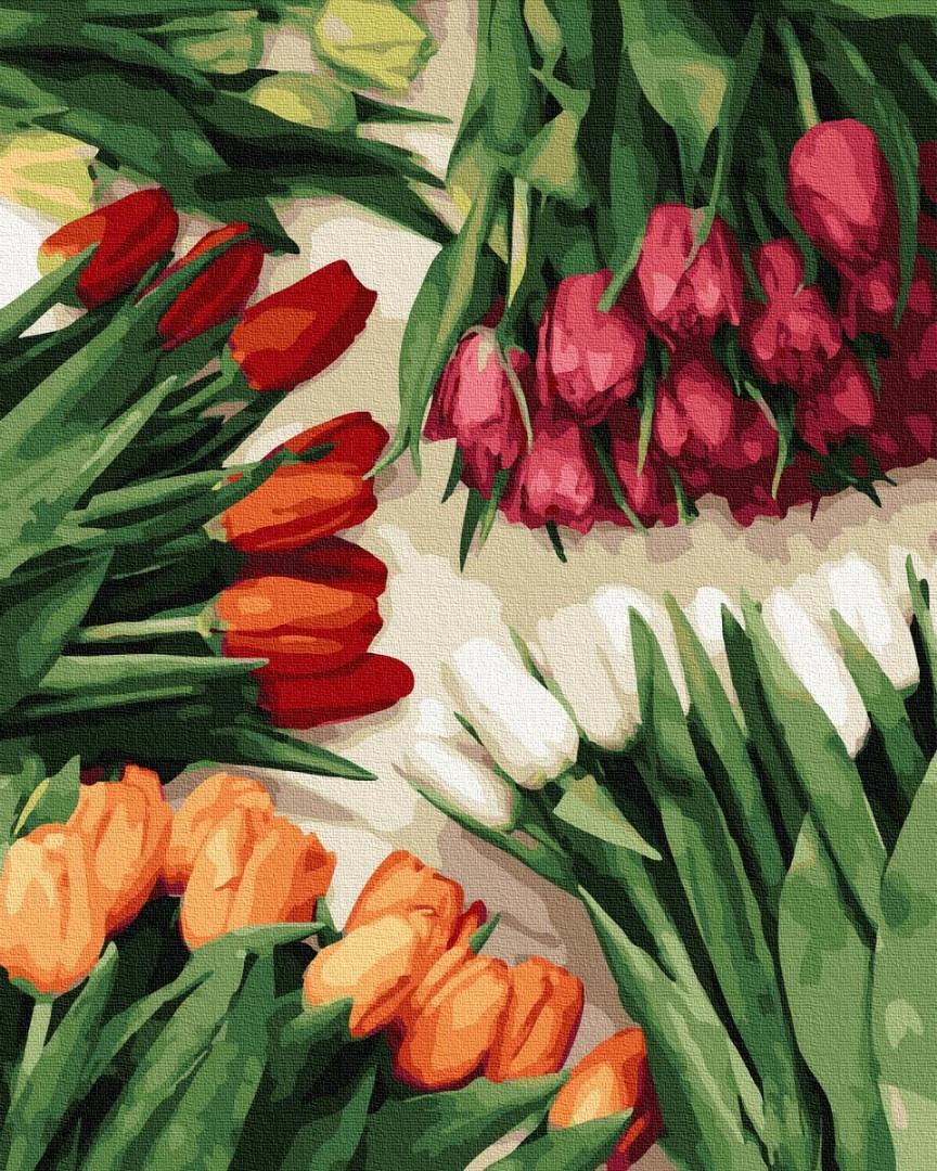 Картина по номерам 40х50 см Brushme Разноцветные тюльпаны (GX 37544)