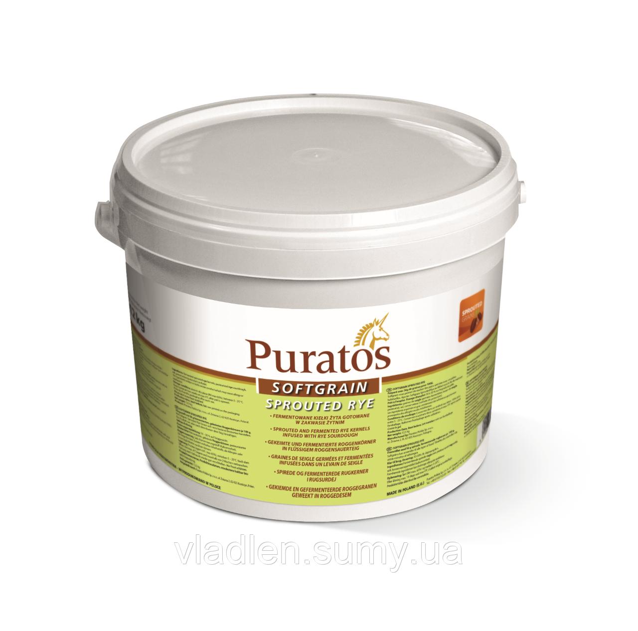 "Натуральна ароматна зернова закваска ""Пророщене жито"" (Softgrain Sprouted Rye) Puratos 12 кг"