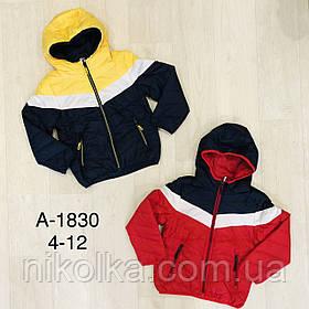 Куртка для мальчиков оптом, Sincere, 4-12 лет, арт. А-1830