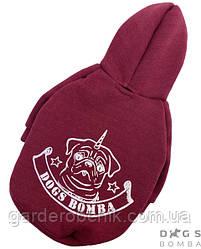 Толстовка, куртка для собаки, кошки Y-193. Одежда для животных