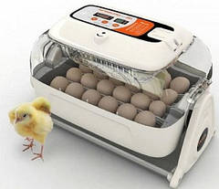 Инкубаторы и принадлежности для домашней птицы