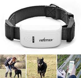 Нашийник Tkstar TK911 з GPS трекером і вологозахист для собак і кішок