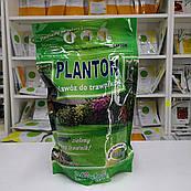 Удобрение Плантон (Planton) для газонов 1 кг