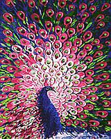 Картина по номерам 40х50 см Brushme Почтенный павлин (GX 4167), фото 1