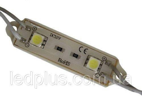 Герметичные светодиодные модули - 2 светодиода 5050 СИНИЙ