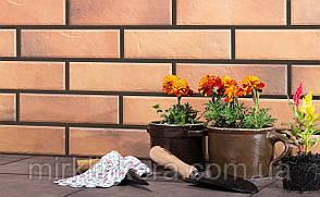 Клинкерная плитка Cerrad Retro brick curry, фото 2