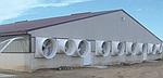 Осевой вентилятор: искусственные легкие животноводческих хозяйств