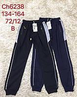 Спортивные брюки для мальчиков S&D, 134-164 рр. Артикул: CH6238