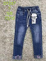 Джинсовые брюки для девочек S&D, 3-8 лет. Артикул: DT247