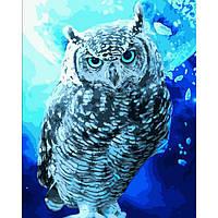 Картина рисование по номерам Идейка Берегиня нічного сонця 40х50см КНО4089 набор для росписи, краски, кисти,
